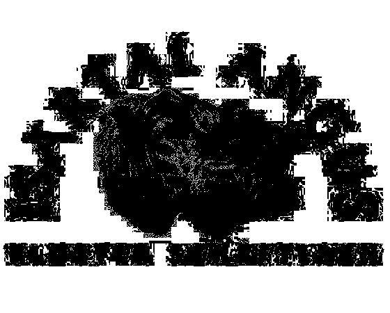 Angusrinder des Gasthofs Klosterbräustüberl Schäftlarn auf der Weide